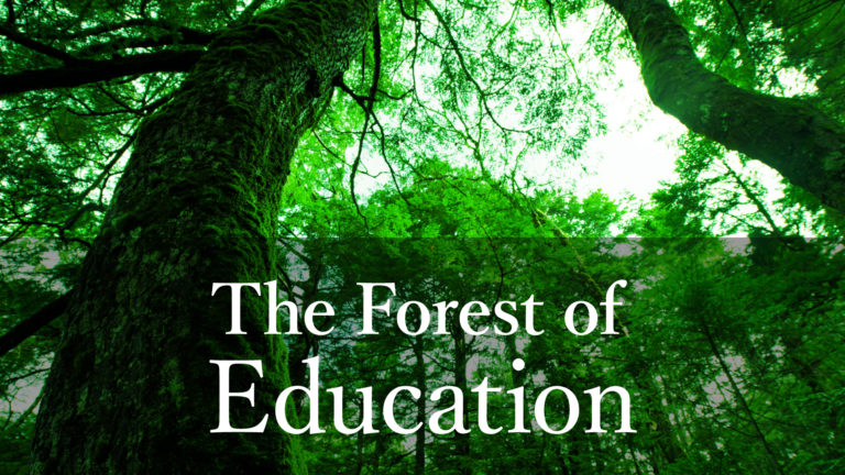 The Forest of Education