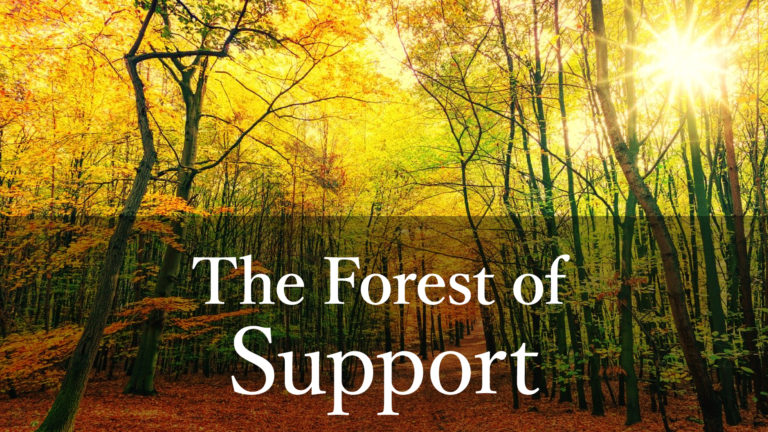 The Fores of Support